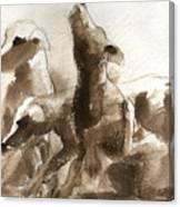 Three Dogs Canvas Print