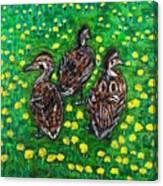 Three Ducklings Canvas Print