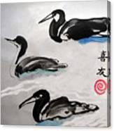 Three Ducks Canvas Print