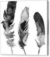 Three Feathers Silhouette Canvas Print