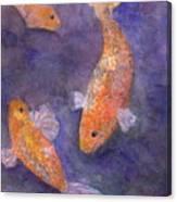 Three Fish Canvas Print