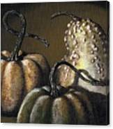 Three Gourds Canvas Print