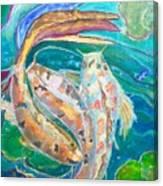 Three Koi Canvas Print