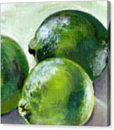 Three Limes Canvas Print