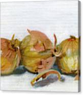 Three Onions Canvas Print
