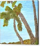 Three Palms At The Beach Canvas Print