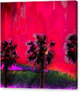 Three Palms II Canvas Print
