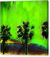 Three Palms IIi Canvas Print