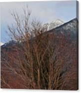 Three Peaks In Winter Canvas Print