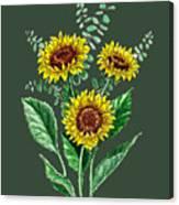 Three Playful Sunflowers Canvas Print