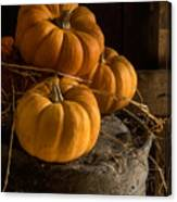 Three Pumpkins On A Bucket Canvas Print