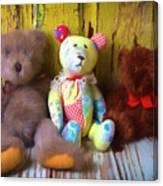 Three Special Bears Canvas Print