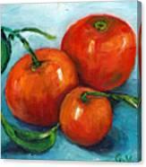 Three Tangerines Still Life Grace Venditti Montreal Art Canvas Print