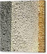 Three Textures Canvas Print
