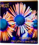 Three Wild Flowers Friendship Canvas Print