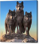 Three Wolves Watching You Canvas Print