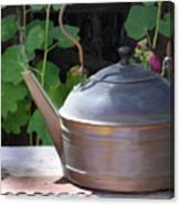 Thrift Store Teapot Canvas Print