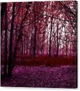 Through A Forest Canvas Print