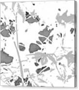 Through A Red Filter Canvas Print