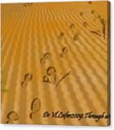Through Desert Canvas Print