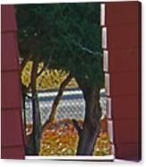 Through My Neighbors Porch Canvas Print