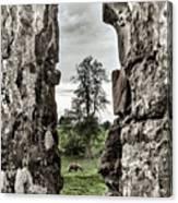 Through The Castle Window Canvas Print