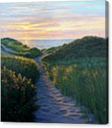 Through The Dunes Canvas Print