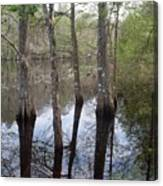 Through The Trees And To The River Canvas Print