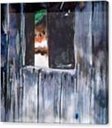 Thru the Barn Window Canvas Print