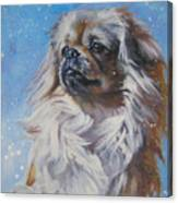 Tibetan Spaniel In Snow Canvas Print
