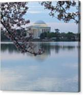 Tidal Basin Blossoms - Jefferson Memorial Canvas Print