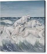 Tidal Race Canvas Print
