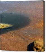 Tide Pool With Coquina Rock Canvas Print