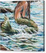 Tidepool Canvas Print