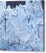 Tidewater Glacier In Glacier Bay Canvas Print