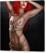 Tied Girl, Rope Harness - Fine Art Of Bondage Canvas Print