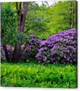Tiergarten In Spring Canvas Print