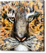 Tig The Tiger With An Attitude Canvas Print