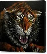 Tiger-1 Original Oil Painting Canvas Print