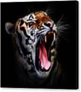 Tiger 10 Canvas Print