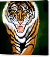 Tiger Charging Canvas Print