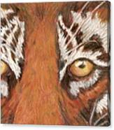 Tiger Eyes 2 Canvas Print