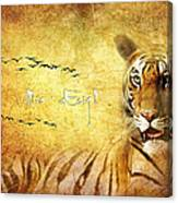 Tiger In The Sun Canvas Print