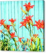 Tiger Lily And Rustic Blue Wood Canvas Print