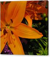 Tiger Lily Bouquet Canvas Print