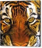 Tiger Mask  Original Oil Painting Canvas Print