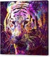 Tiger Surreal Painting Predator  Canvas Print