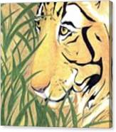 Tiger Traveler - Www.jennifer-d-art.com Canvas Print