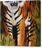 Tiger Wildlife Art Canvas Print