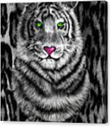Tigerflouge Canvas Print